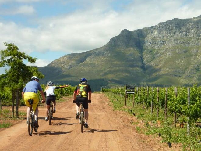 bike and wine tours stellenbosch