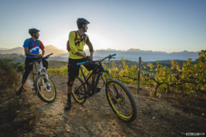 Bottelary MTB trails